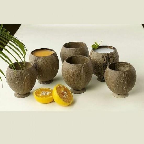 Coconut Shell Powder Case
